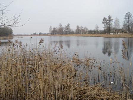 Озеро с.Злобычи