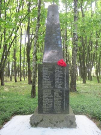 Памятник воинам ВОВ  с. Ноздрыще