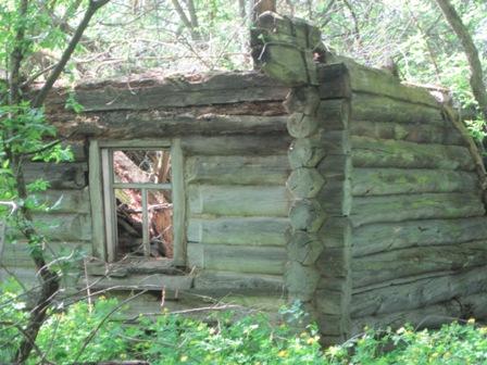 с. Новое Шарно - остатки одной из сотен хат села