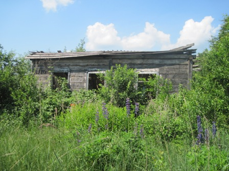 Выселенные дома с.Полесское